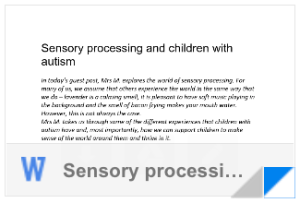Sensory Processing Word Document
